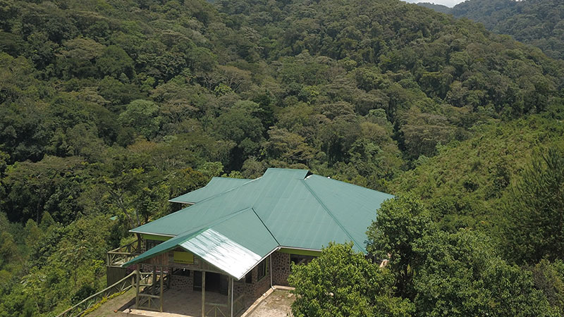 Gorilla Hills eco Lodge